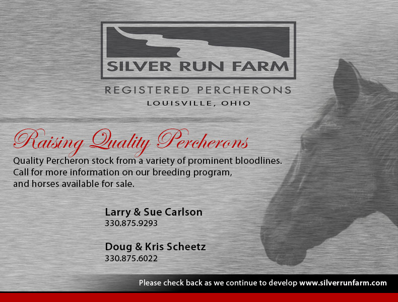 Quality Percheron stock from a variety of prominent bloodlines. Call for more information on our breeding program, and horses available for sale. Larry & Sue Carlson: 330.875.9293, or Doug & Kris Scheetz 330.875.6022
